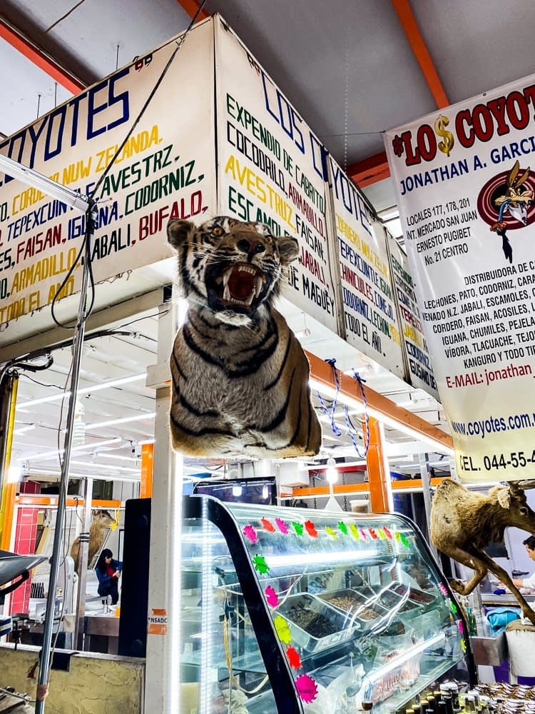 A stuffed tiger on the wall at the market.